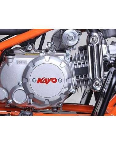 Quad Kayo Predator AT110 - Dettaglio Motore