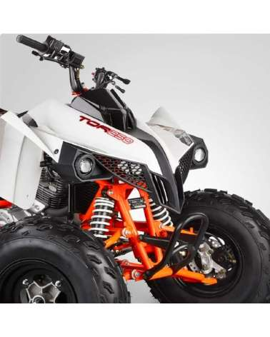 Maxi Quad Kayo Tor 250cc - Dettaglio Frontale