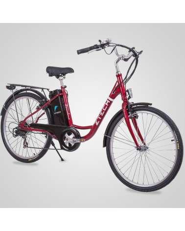 Bici Elettrica Barcelona 250Watt E-bike
