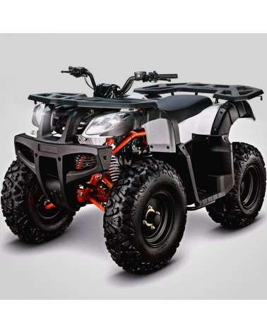 Maxi Quad Kayo Bull AU180