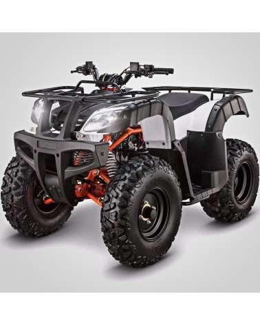 Maxi Quad Kayo Bull AU150